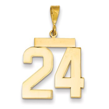 14k Large Polished Number 24 Charm
