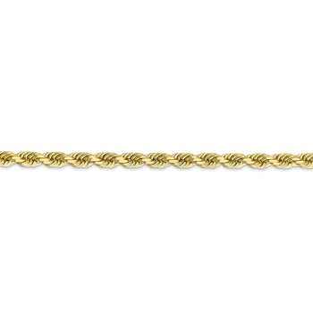 Leslie's 10K 4.5mm Diamond-Cut Rope Chain