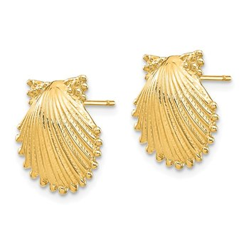 14k Shell Earrings