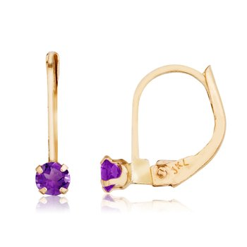 14k Petite Amethyst Leverback Earrings