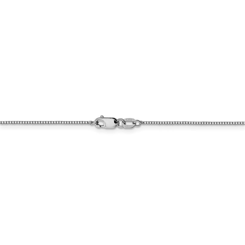 Leslie's Leslie's 14K White Gold .8mm Box with Lobster Clasp Chain
