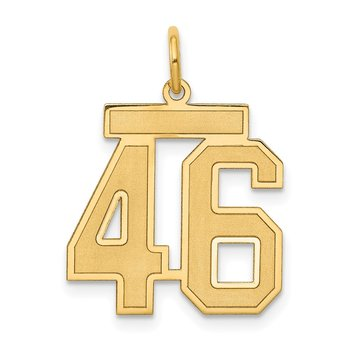 14k Medium Satin Number 46 Charm