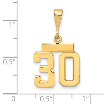 14k Small Polished Number 30 Charm