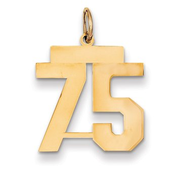 14k Medium Polished Number 75 Charm