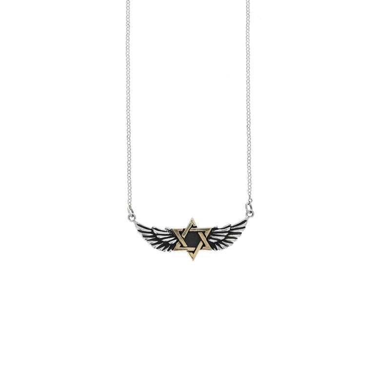 King Baby Winged Star Of David Necklace