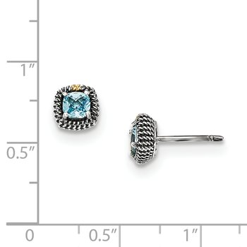 Sterling Silver w/14k Square Cushion Blue Topaz Post Earrings