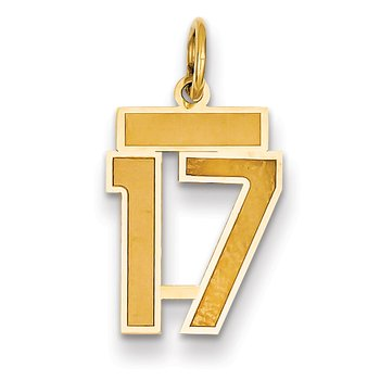 14k Small Satin Number 17 Charm