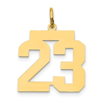 14k Medium Polished Number 23 Charm