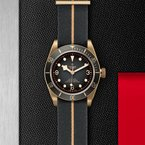 TUDOR Black Bay Bronze