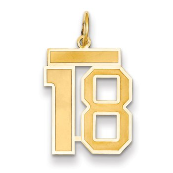 14k Medium Satin Number 18 Charm