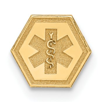 14k Non-enameled Attachable Medical Emblem Charm