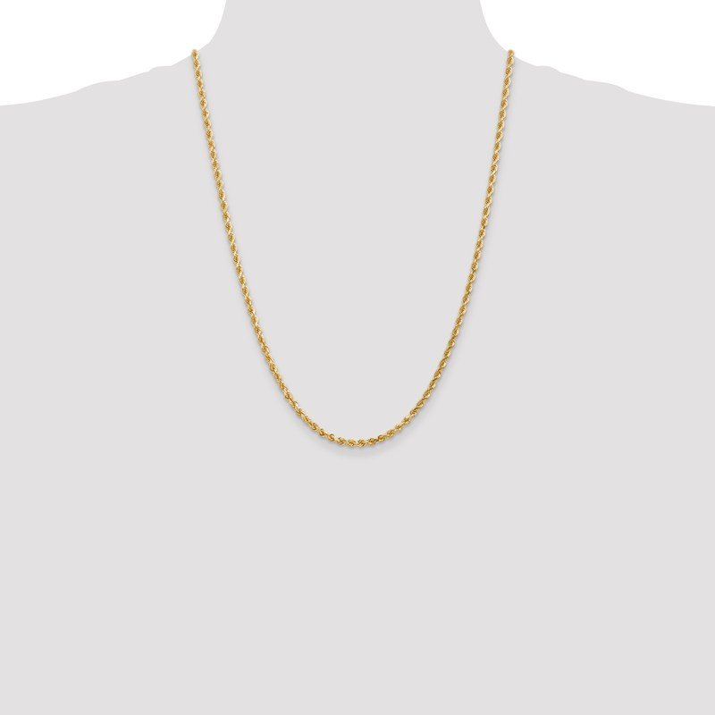 Leslie's Leslie's 14K 3mm Diamond-Cut Rope Chain