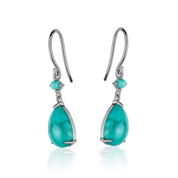 Turquoise Small Drop Earrings