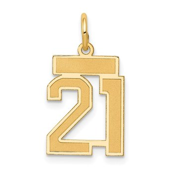 14k Small Satin Number 21 Charm