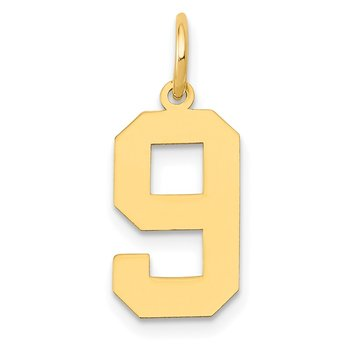 14k Medium Polished Number 9 Charm