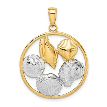 14K w/Rhodium Shell Cluster in Circle Pendant