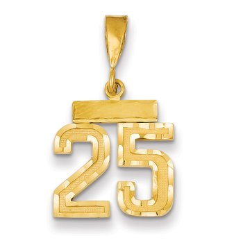 14k Small Diamond-cut Number 25 Charm