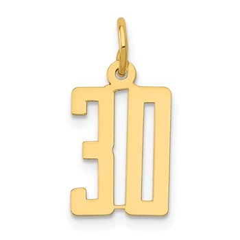 14k Small Polished Elongated 30 Charm