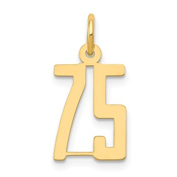 14k Small Polished Elongated 75 Charm
