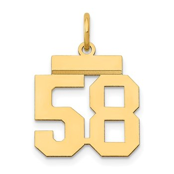 14k Small Polished Number 58 Charm