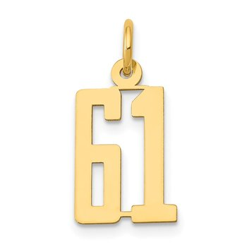14k Small Polished Elongated 61 Charm