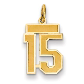 14k Small Satin Number 15 Charm