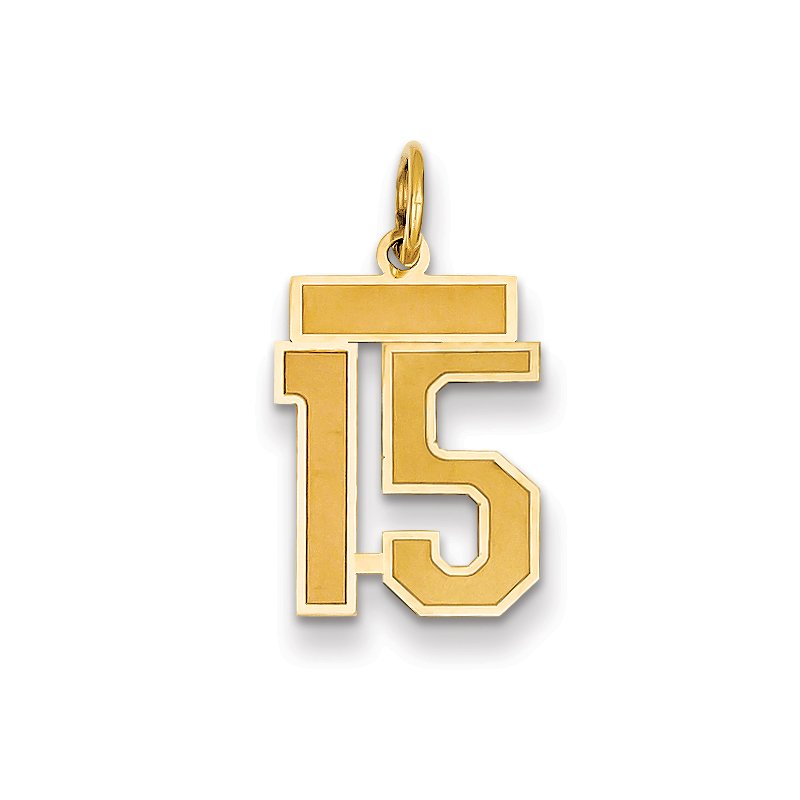 Quality Gold 14k Small Satin Number 15 Charm