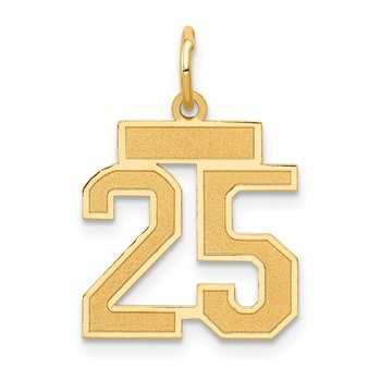 14k Small Satin Number 25 Charm