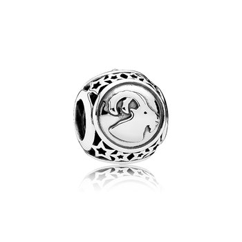 Capricorn Star Sign Charm