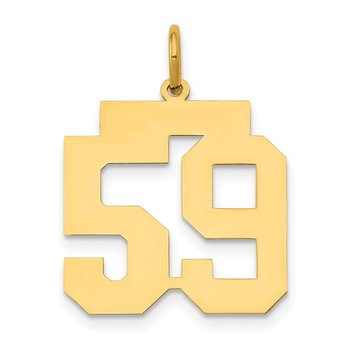 14k Medium Polished Number 59 Charm