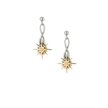 Compass Star Post Earrings