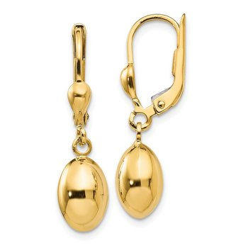 Leslie's 14k Polished Dangle Leverback Earrings