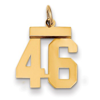 14k Small Polished Number 46 Charm