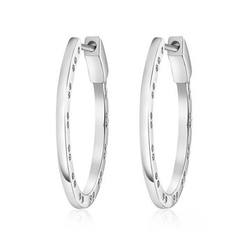 Horseshoe Design Hoop Earrings