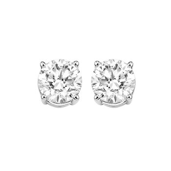 Diamond Stud Earrings in 14K White Gold (1/2 ct. tw.) I2/I3 - H/K