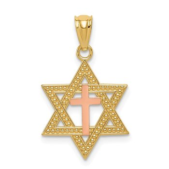 14K Two-Tone Polished Cross in Star of David Pendant